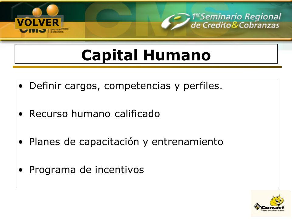 Capital Humano Definir cargos, competencias y perfiles. Recurso humano calificado Planes de capacitación y entrenamiento Programa de incentivos VOLVER