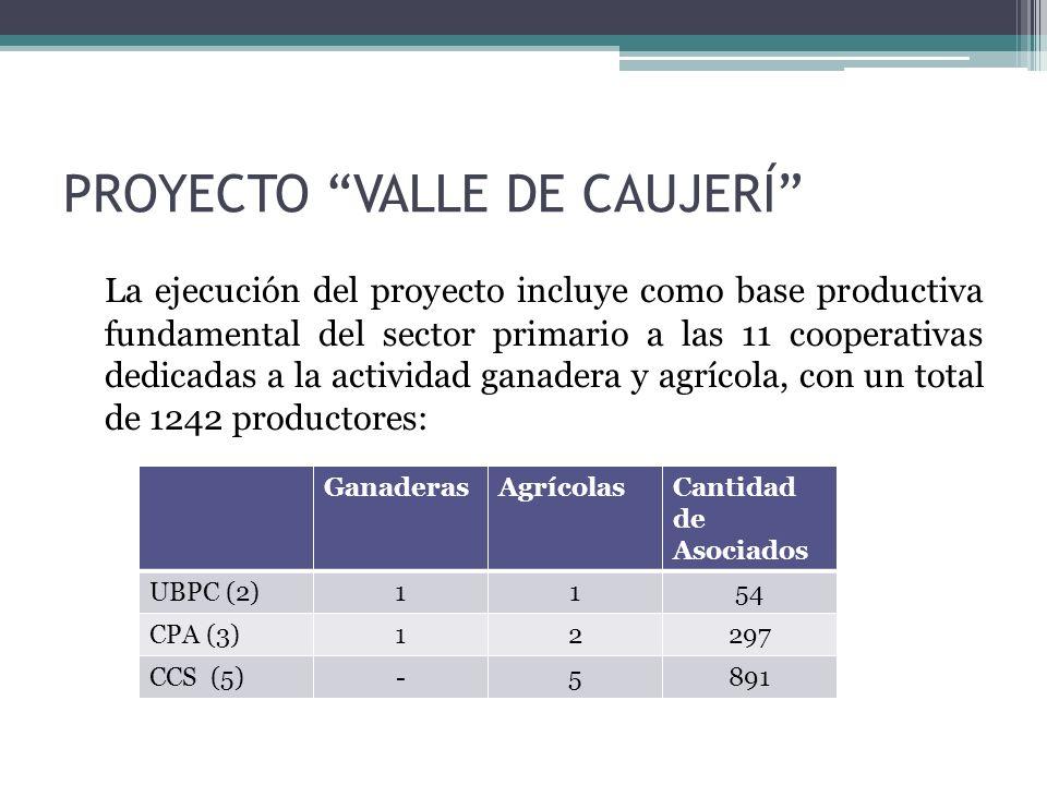PROYECTO VALLE DE CAUJERÍ La ejecución del proyecto incluye como base productiva fundamental del sector primario a las 11 cooperativas dedicadas a la actividad ganadera y agrícola, con un total de 1242 productores: GanaderasAgrícolasCantidad de Asociados UBPC (2)1154 CPA (3)12297 CCS (5)-5891