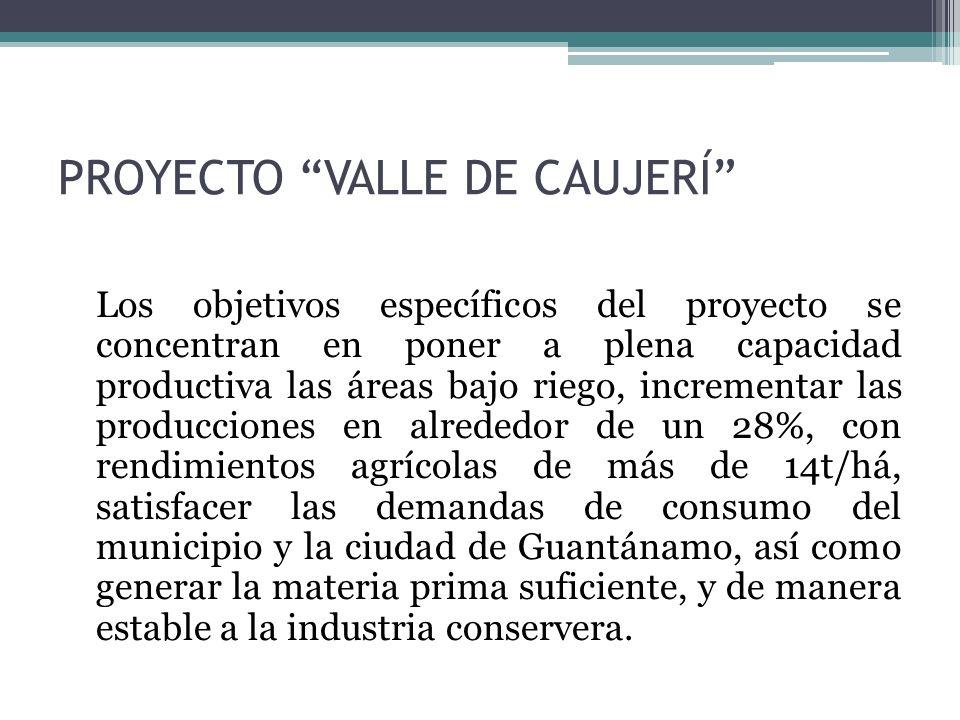 PROYECTO VALLE DE CAUJERÍ Los objetivos específicos del proyecto se concentran en poner a plena capacidad productiva las áreas bajo riego, incrementar las producciones en alrededor de un 28%, con rendimientos agrícolas de más de 14t/há, satisfacer las demandas de consumo del municipio y la ciudad de Guantánamo, así como generar la materia prima suficiente, y de manera estable a la industria conservera.