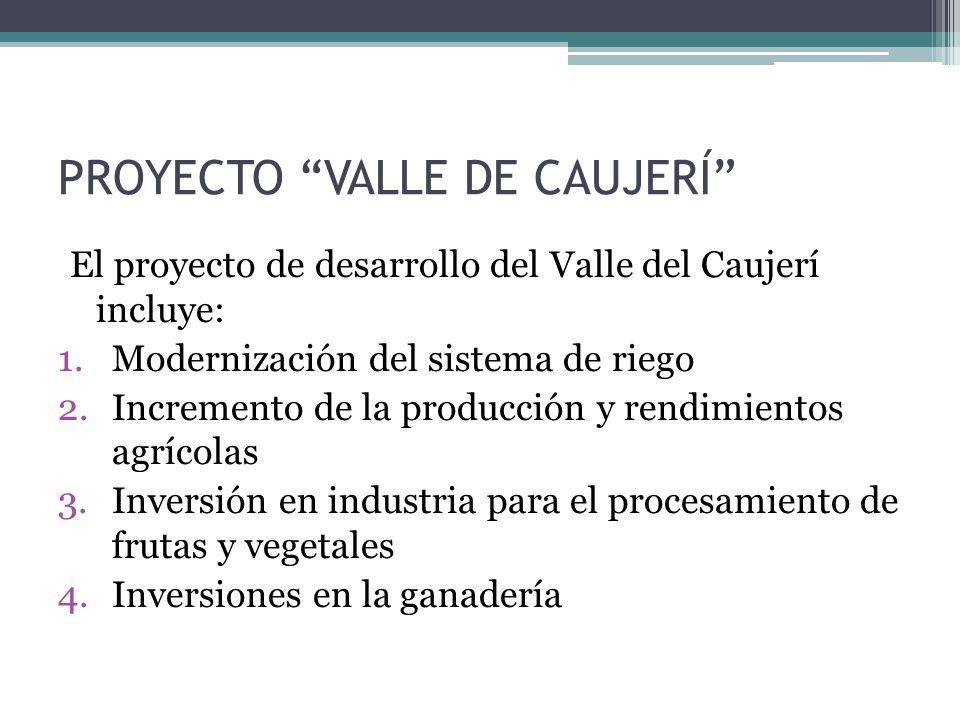 PROYECTO VALLE DE CAUJERÍ El proyecto de desarrollo del Valle del Caujerí incluye: 1.Modernización del sistema de riego 2.Incremento de la producción y rendimientos agrícolas 3.Inversión en industria para el procesamiento de frutas y vegetales 4.Inversiones en la ganadería