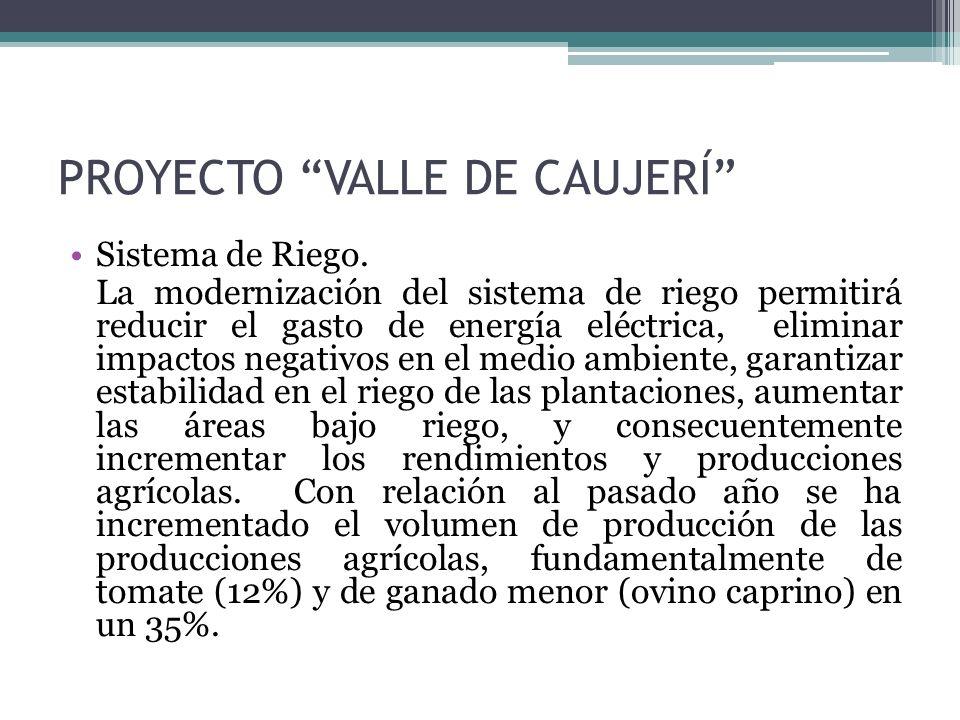 PROYECTO VALLE DE CAUJERÍ Sistema de Riego.
