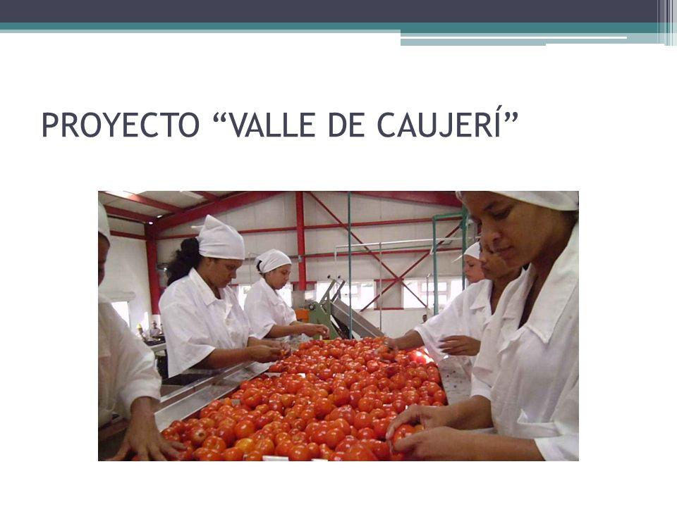 PROYECTO VALLE DE CAUJERÍ