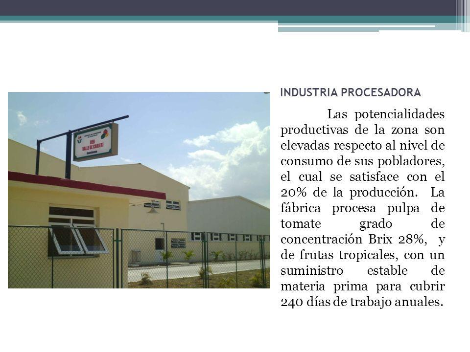 INDUSTRIA PROCESADORA Las potencialidades productivas de la zona son elevadas respecto al nivel de consumo de sus pobladores, el cual se satisface con el 20% de la producción.