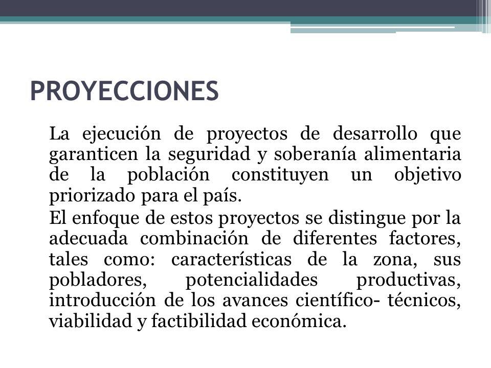 PROYECCIONES La ejecución de proyectos de desarrollo que garanticen la seguridad y soberanía alimentaria de la población constituyen un objetivo priorizado para el país.
