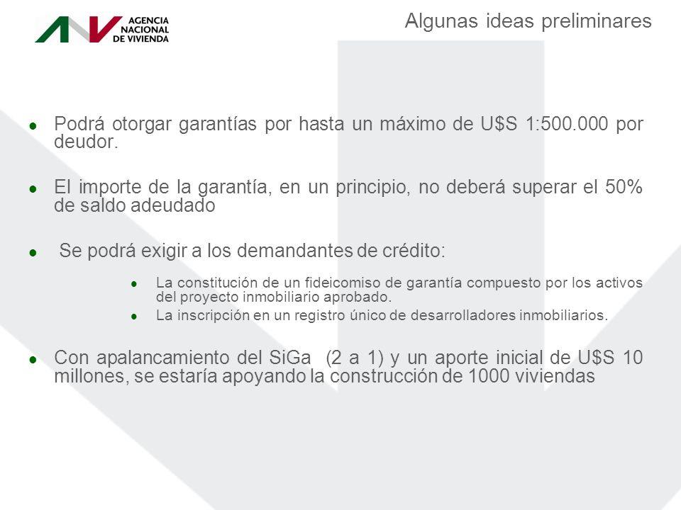Algunas ideas preliminares Podrá otorgar garantías por hasta un máximo de U$S 1:500.000 por deudor.