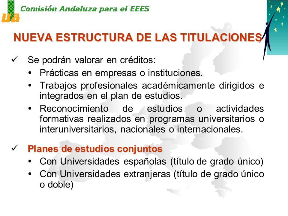 NUEVA ESTRUCTURA DE LAS TITULACIONES Se podrán valorar en créditos: Prácticas en empresas o instituciones.