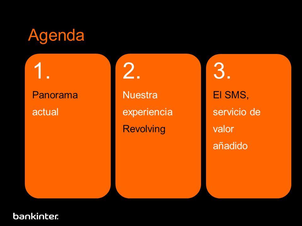 Agenda 1. Panorama actual 3. El SMS, servicio de valor añadido 2. Nuestra experiencia Revolving