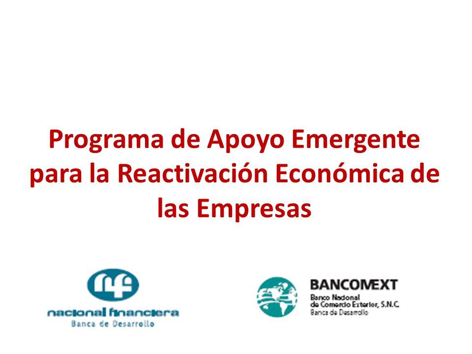14 de mayo de 2009 127 Programa de Apoyo Emergente para la Reactivación Económica de las Empresas