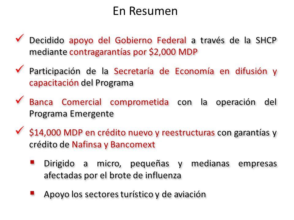 En Resumen Decidido apoyo del Gobierno Federal a través de la SHCP mediante contragarantías por $2,000 MDP Participación de la Secretaría de Economía