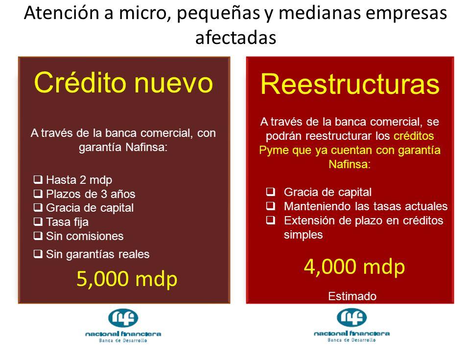 Atención a micro, pequeñas y medianas empresas afectadas Crédito nuevo A través de la banca comercial, con garantía Nafinsa: Hasta 2 mdp Plazos de 3 a