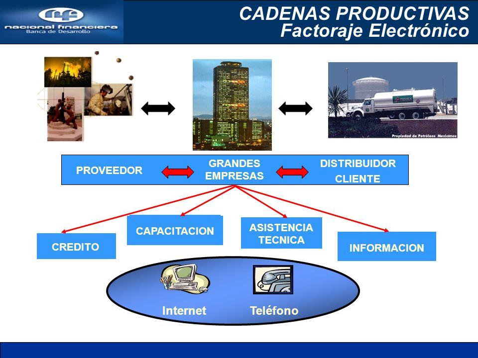 CREDITO CAPACITACION ASISTENCIA TECNICA INFORMACION GRANDES EMPRESAS PROVEEDOR DISTRIBUIDOR CLIENTE Internet Teléfono CADENAS PRODUCTIVAS Factoraje El