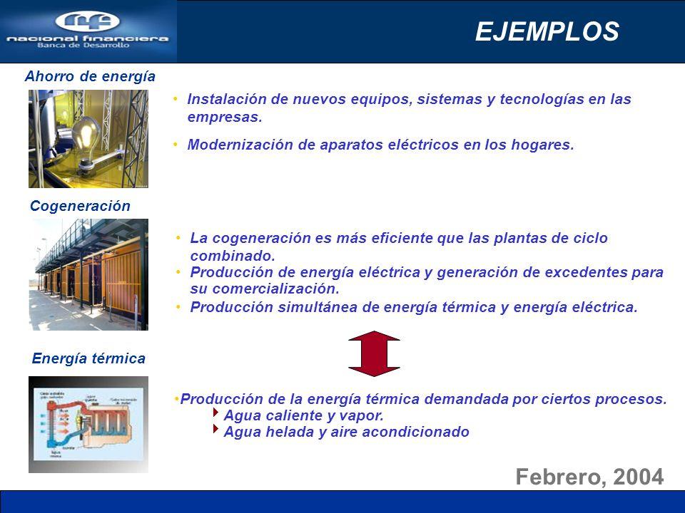 Febrero, 2004 EJEMPLOS Energía térmica Ahorro de energía Cogeneración Producción de la energía térmica demandada por ciertos procesos. Agua caliente y