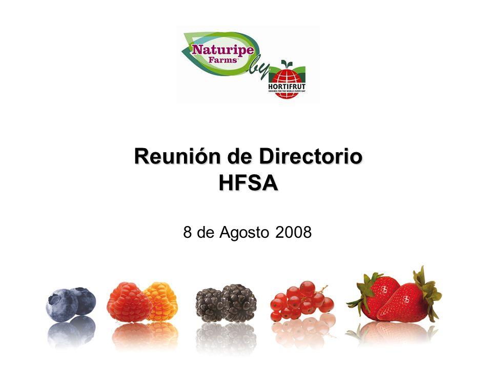 Reunión de Directorio HFSA 8 de Agosto 2008
