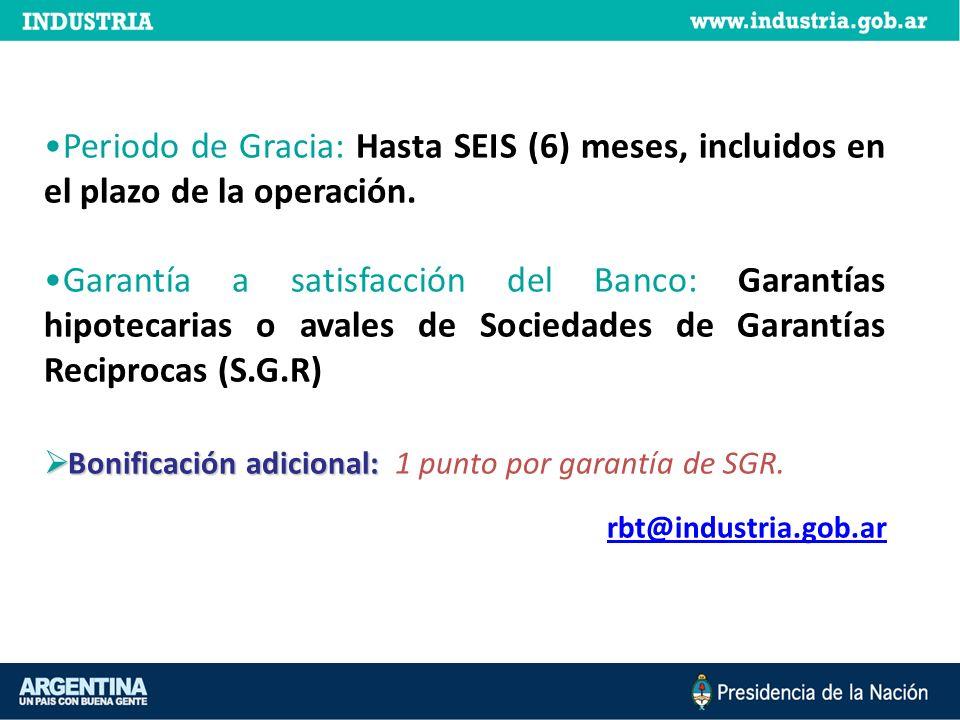 Periodo de Gracia: Hasta SEIS (6) meses, incluidos en el plazo de la operación. Garantía a satisfacción del Banco: Garantías hipotecarias o avales de