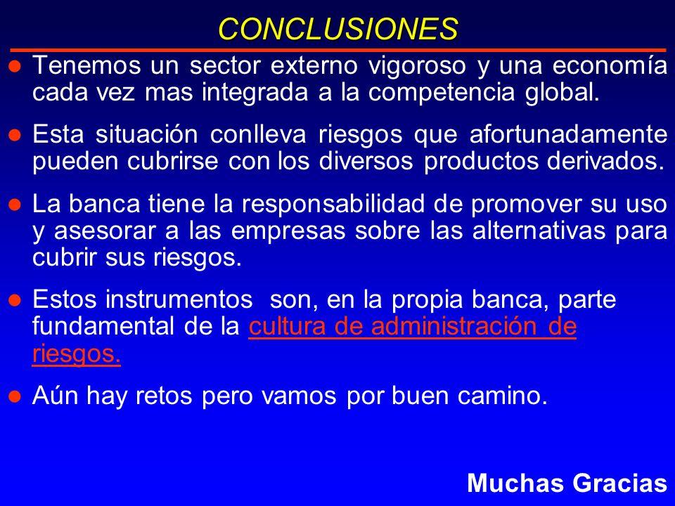 l Tenemos un sector externo vigoroso y una economía cada vez mas integrada a la competencia global.