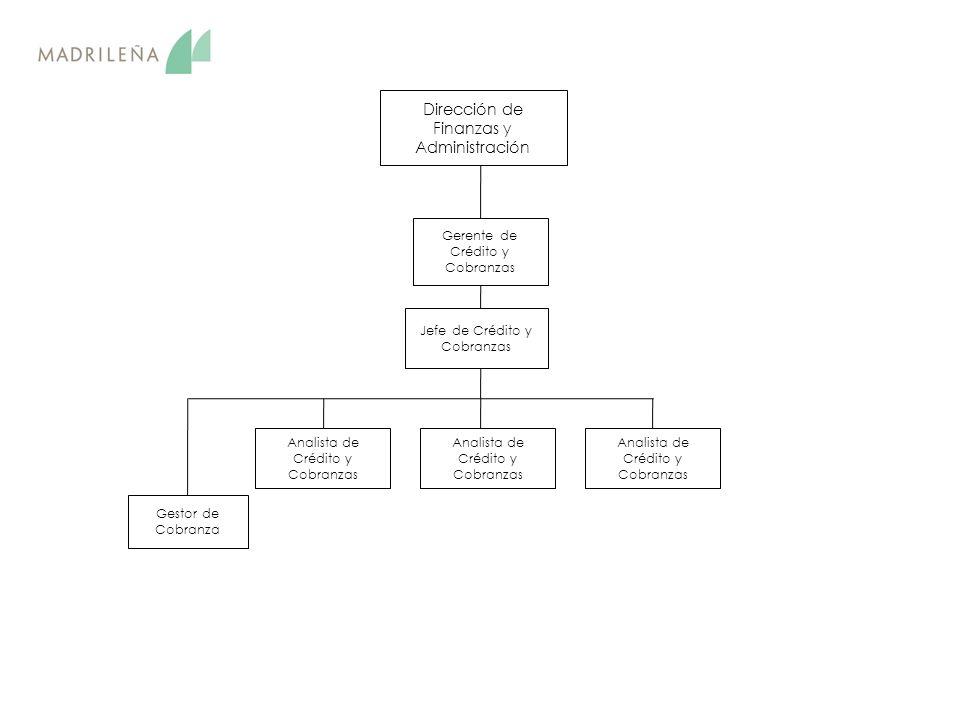 Dirección de Finanzas y Administración Jefe de Crédito y Cobranzas Gestor de Cobranza Gerente de Crédito y Cobranzas Analista de Crédito y Cobranzas