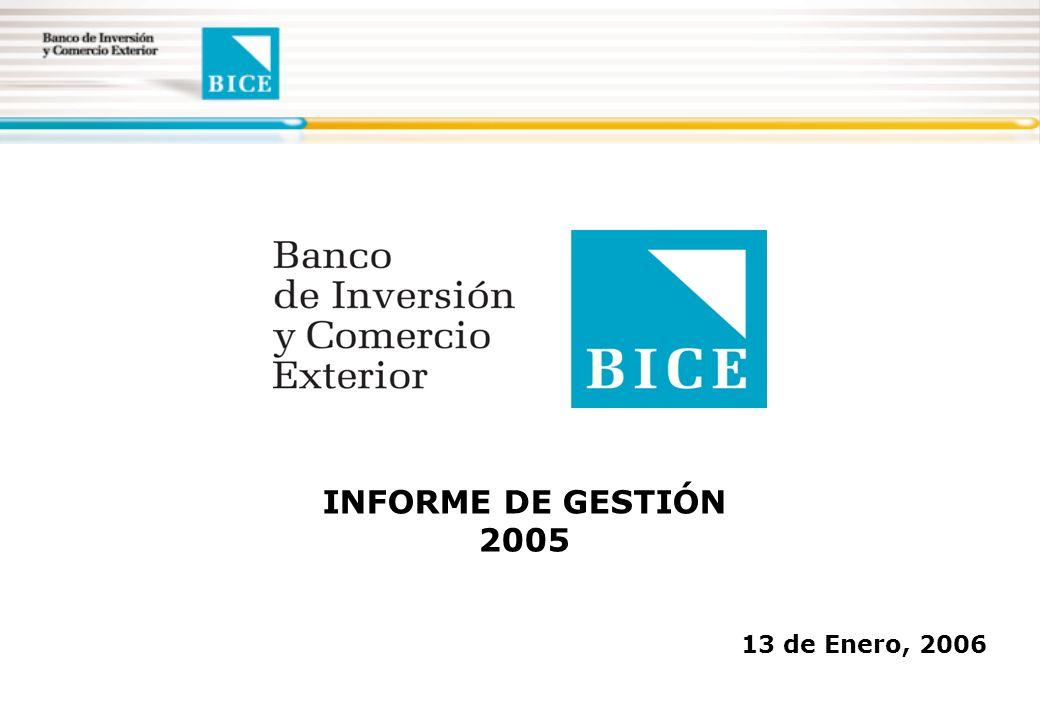 13 de Enero, 2006 INFORME DE GESTIÓN 2005