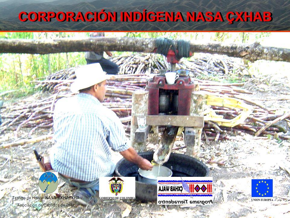 QUIENES SOMOS LA CORPORACION INDIGENA NASA ÇXHAB, es una empresa sin ánimo de lucro de propiedad de los cabildos indígenas y la Asociación de Cabildos Nasa Çxhaçxha del municipio de Páez, inscrita en la Cámara de Comercio del Cauca y con presencia en los municipios de Páez e Inzá.