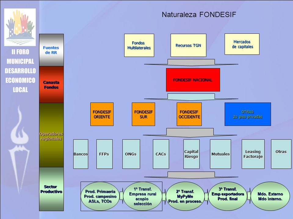 Naturaleza FONDESIF Operadoresregionales Fuentes de RR CanastaFondos SectorProductivo FONDESIF NACIONAL FONDESIFORIENTEFONDESIFSURFONDESIFOCCIDENTEOTRAS 2o piso privadas ONGsCACsCapitalRiesgoMutualesLeasingFactorajeOtrasFFPsBancos FondosMultilaterales Recursos TGN Mercados de capitales de capitales Prod.
