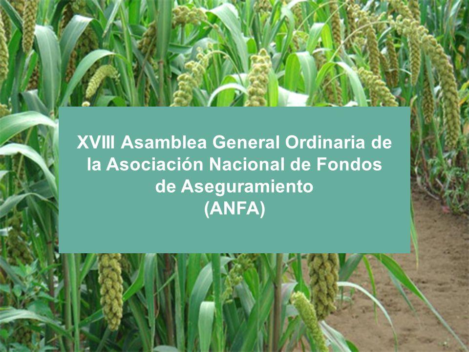 XVIII Asamblea General Ordinaria de la Asociación Nacional de Fondos de Aseguramiento (ANFA)