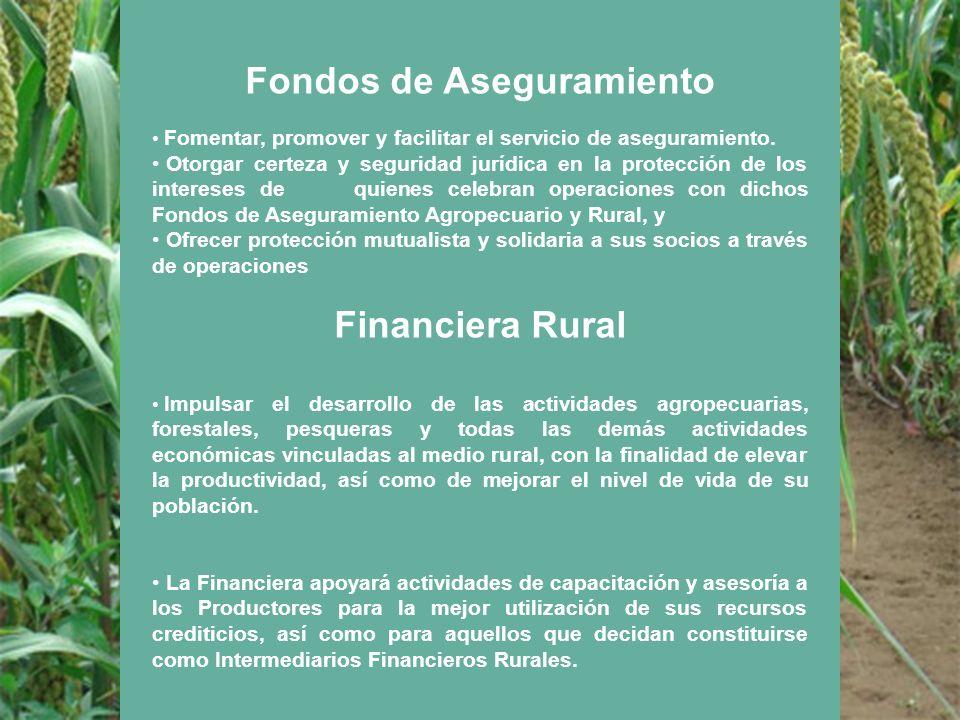 Fondos de Aseguramiento Fomentar, promover y facilitar el servicio de aseguramiento. Otorgar certeza y seguridad jurídica en la protección de los inte