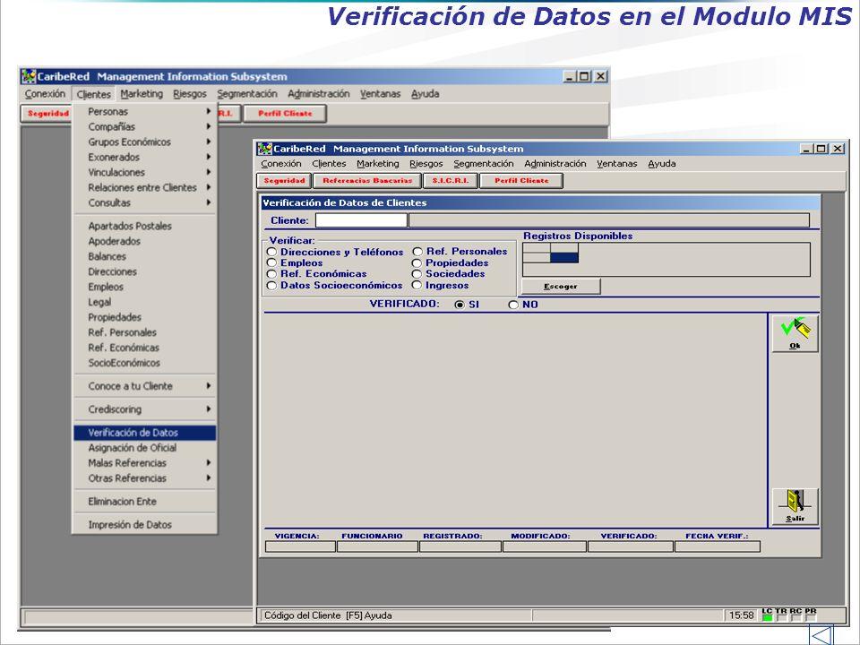 Verificación de Datos en el Modulo MIS