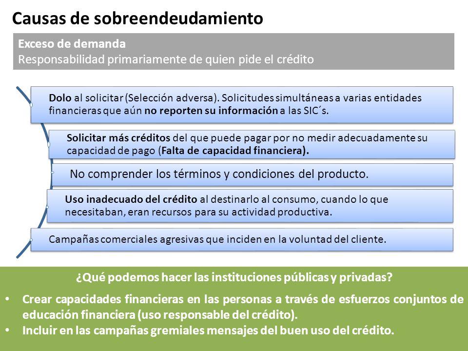 Causas de sobreendeudamiento Exceso de demanda Responsabilidad primariamente de quien pide el crédito Dolo al solicitar (Selección adversa). Solicitud