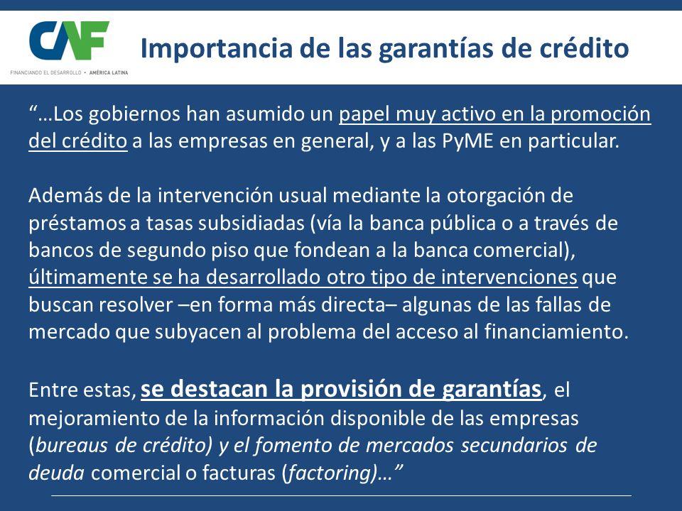 …Los gobiernos han asumido un papel muy activo en la promoción del crédito a las empresas en general, y a las PyME en particular. Además de la interve