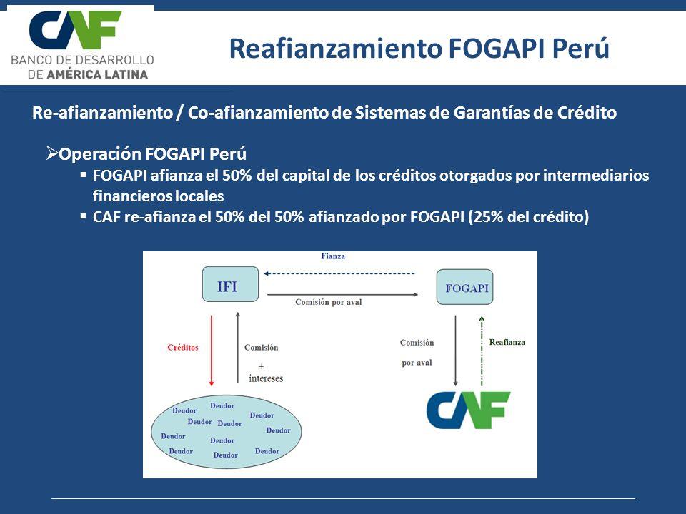 Re-afianzamiento / Co-afianzamiento de Sistemas de Garantías de Crédito Operación Fondo de garantía (FG) FG afianza el 50% del capital de los créditos otorgados por intermediarios financieros locales CAF re-afianza el 25% del 50% afianzado por FG (12,5% del crédito) Banca Comercial USD 800MM (100% del crédito otorgado a la MIPYME) FG USD 400MM (50% garantía) CAF USD 100MM (25% re-afianzamiento, 12,5% del crédito) Reafianzamiento FNG Colombia