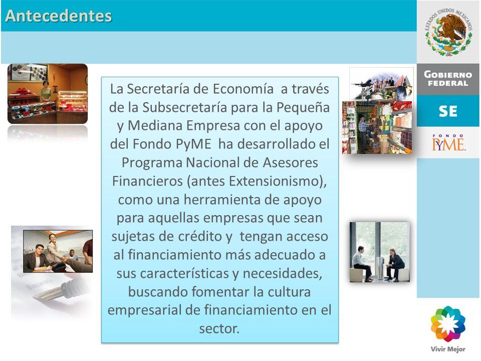 Antecedentes La Secretaría de Economía a través de la Subsecretaría para la Pequeña y Mediana Empresa con el apoyo del Fondo PyME ha desarrollado el P