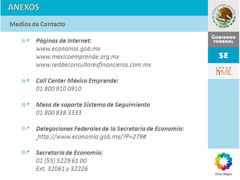 Páginas de Internet: www.economia.gob.mx www.mexicoemprende.org.mx www.reddeconsultoresfinancieros.com.mx Call Center México Emprende: 01 800 910 0910