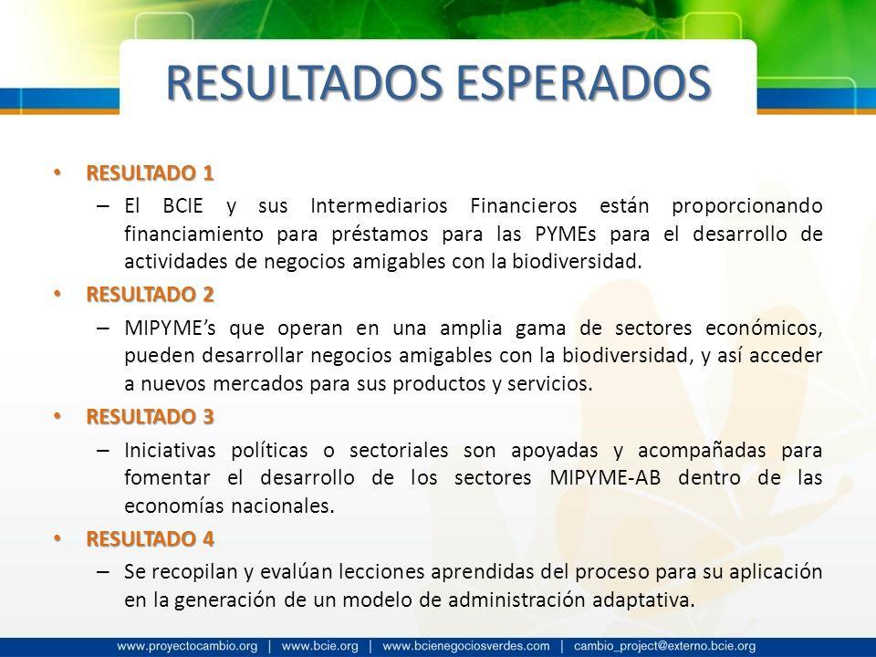 RESULTADOS ESPERADOS RESULTADO 1 RESULTADO 1 – El BCIE y sus Intermediarios Financieros están proporcionando financiamiento para préstamos para las PY