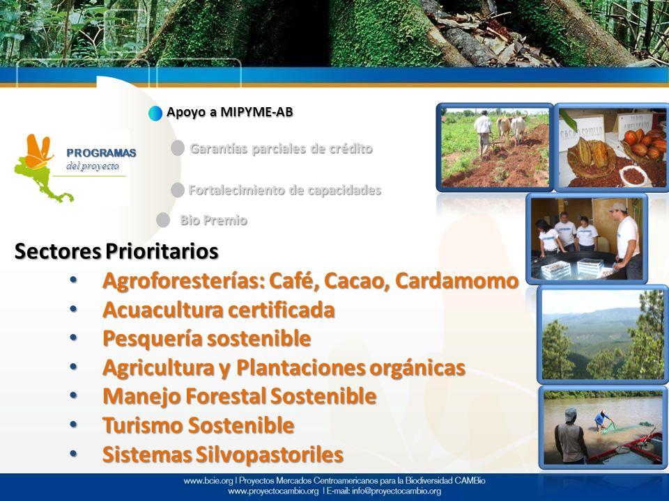 PROGRAMAS del proyecto Apoyo a MIPYME-AB Garantías parciales de crédito Fortalecimiento de capacidades Bio Premio Sectores Prioritarios Agroforestería