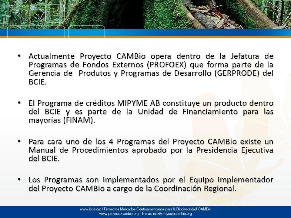 Actualmente Proyecto CAMBio opera dentro de la Jefatura de Programas de Fondos Externos (PROFOEX) que forma parte de la Gerencia de Produtos y Program