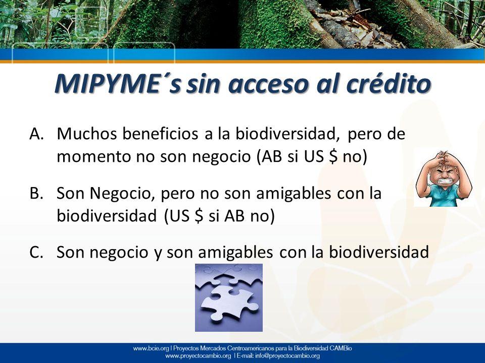 MIPYME´s sin acceso al crédito A.Muchos beneficios a la biodiversidad, pero de momento no son negocio (AB si US $ no) B.Son Negocio, pero no son amiga