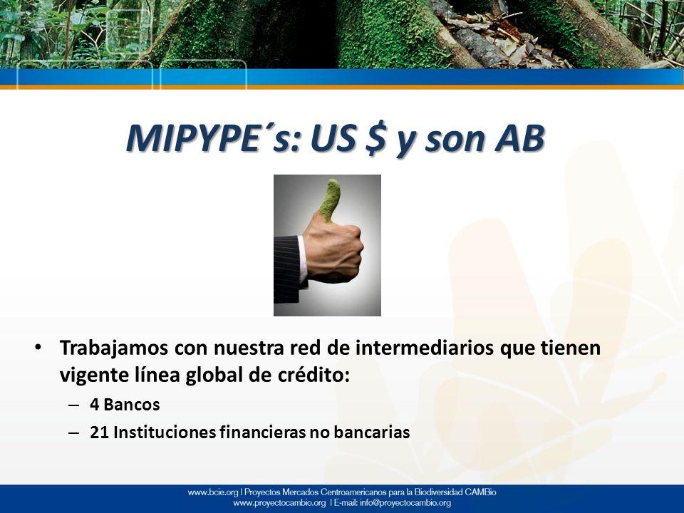 MIPYPE´s: US $ y son AB Trabajamos con nuestra red de intermediarios que tienen vigente línea global de crédito: – 4 Bancos – 21 Instituciones financi