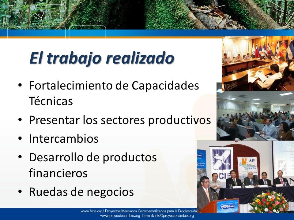 El trabajo realizado Fortalecimiento de Capacidades Técnicas Presentar los sectores productivos Intercambios Desarrollo de productos financieros Rueda
