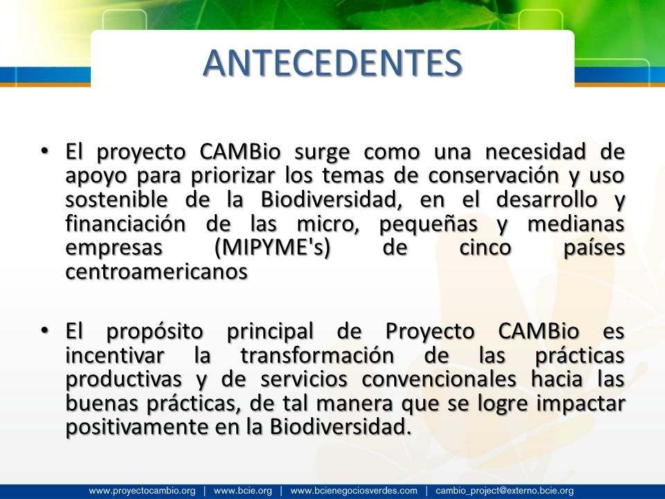 ANTECEDENTES El proyecto CAMBio surge como una necesidad de apoyo para priorizar los temas de conservación y uso sostenible de la Biodiversidad, en el