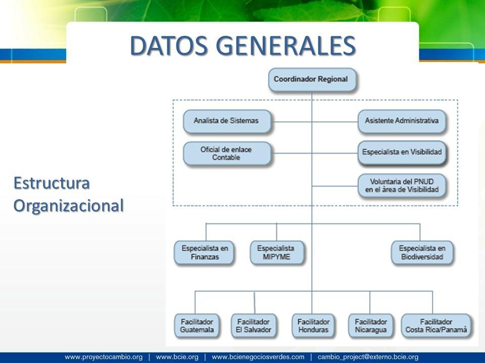 DATOS GENERALES EstructuraOrganizacional