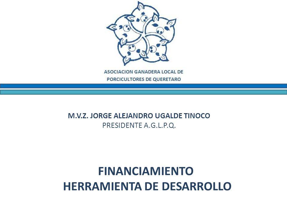 M.V.Z. JORGE ALEJANDRO UGALDE TINOCO PRESIDENTE A.G.L.P.Q. FINANCIAMIENTO HERRAMIENTA DE DESARROLLO