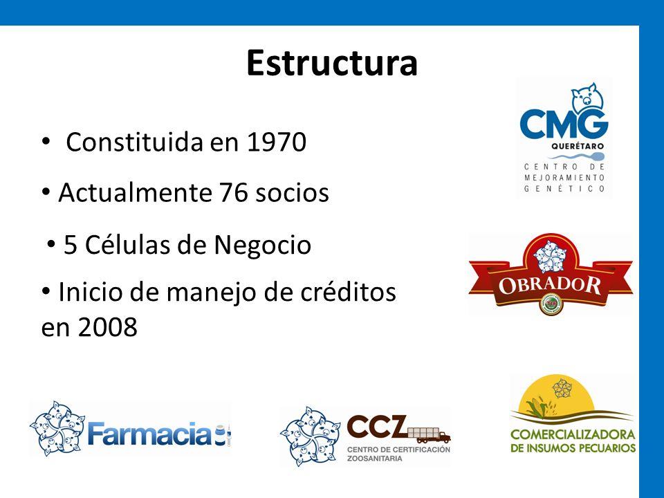 Estructura Constituida en 1970 Actualmente 76 socios 5 Células de Negocio Inicio de manejo de créditos en 2008