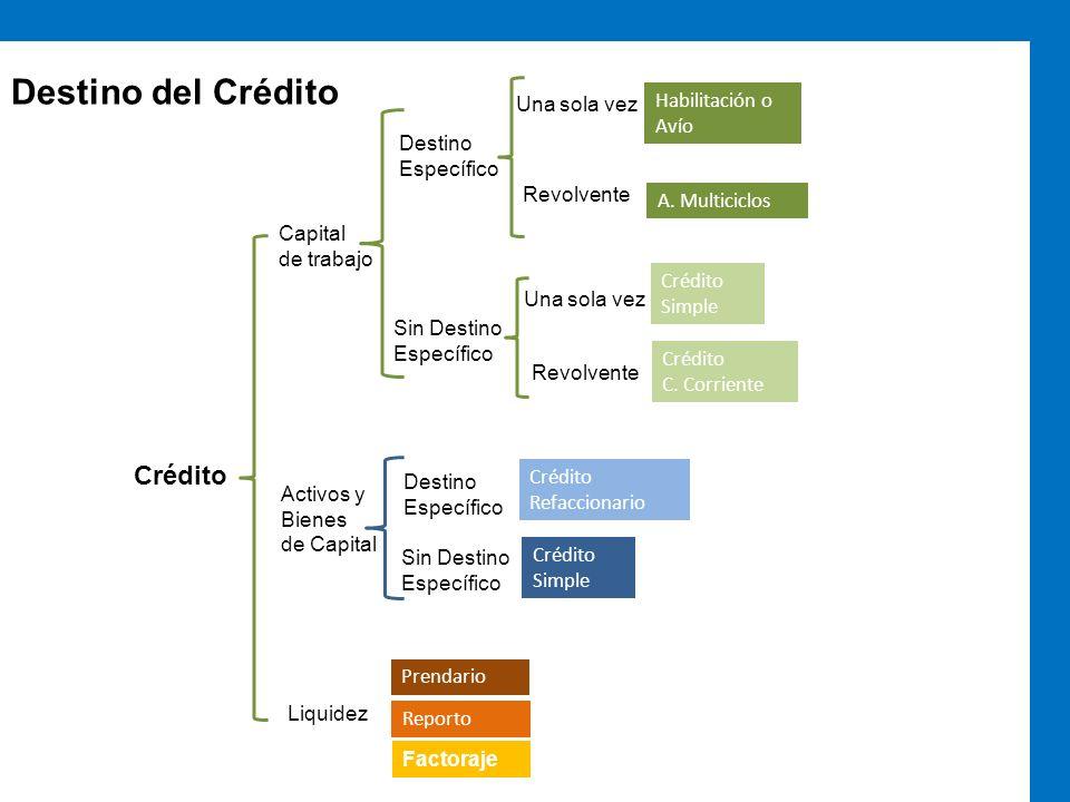 Destino del Crédito Crédito Capital de trabajo Activos y Bienes de Capital Destino Específico Sin Destino Específico Una sola vez Revolvente Una sola