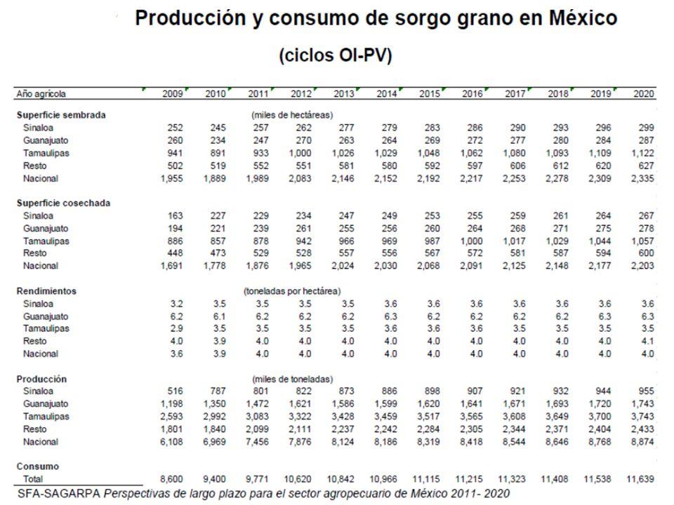 MAIZ AMARILLO REPRESENTA APROXIMADAMENTE EL 5% DE LA PRODUCCIÓN NACIONAL DE MAÍZ EN MÉXICO.