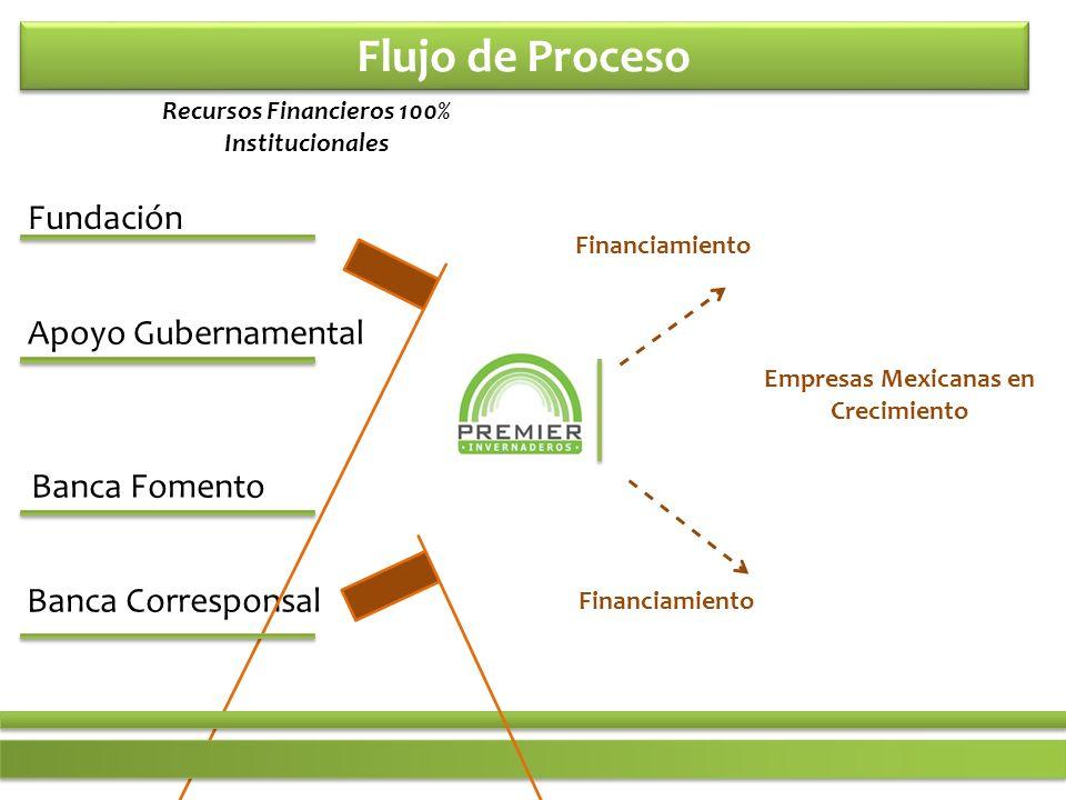 Flujo de Proceso Fundación Banca Fomento Apoyo Gubernamental Banca Corresponsal Empresas Mexicanas en Crecimiento Financiamiento Recursos Financieros