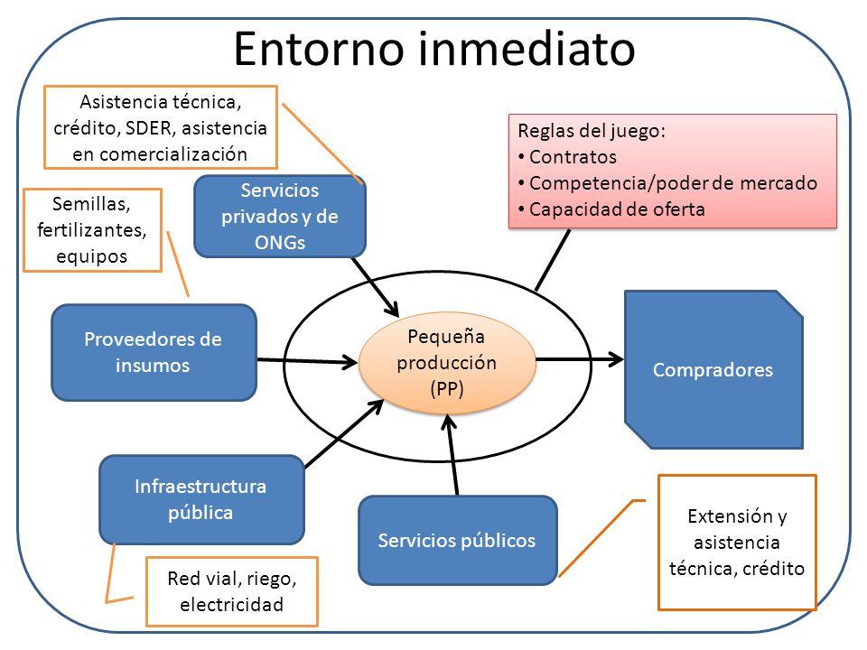 Entorno inmediato Pequeña producción (PP) Servicios privados y de ONGs Proveedores de insumos Infraestructura pública Servicios públicos Compradores R