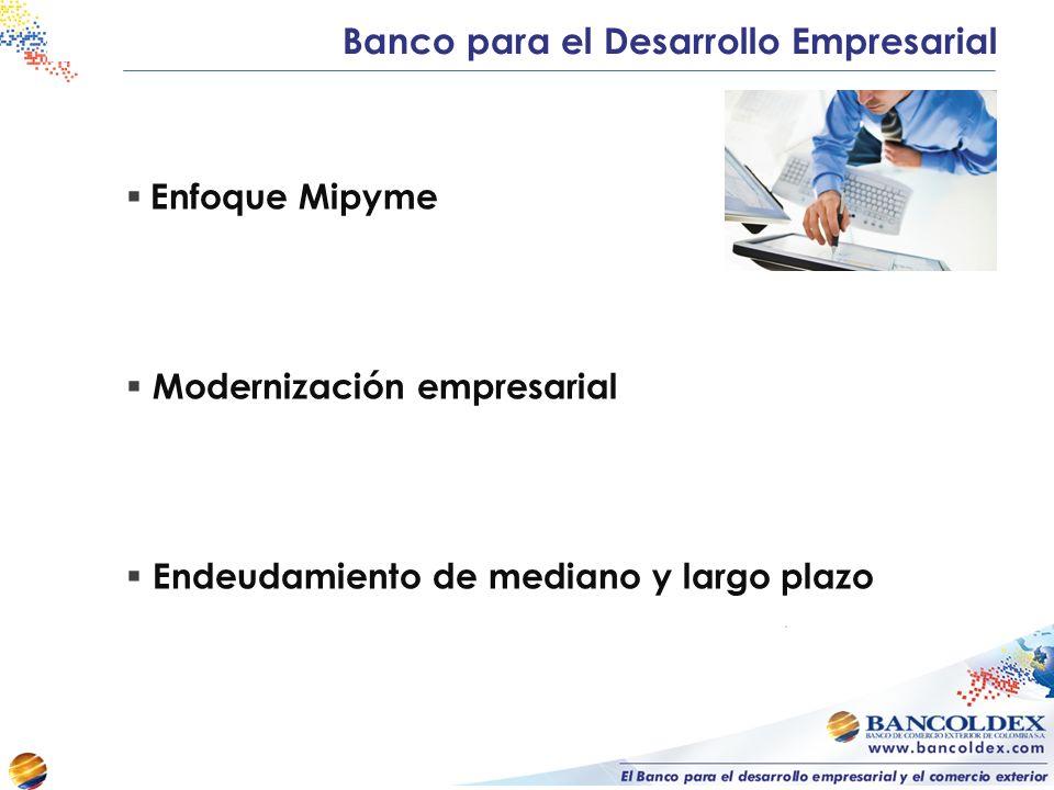 Enfoque Mipyme Modernización empresarial Endeudamiento de mediano y largo plazo Banco para el Desarrollo Empresarial