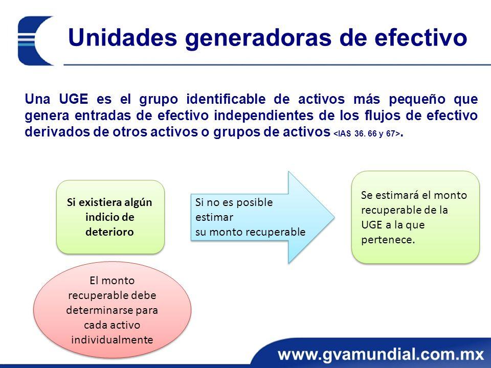 Una UGE es el grupo identificable de activos más pequeño que genera entradas de efectivo independientes de los flujos de efectivo derivados de otros activos o grupos de activos.