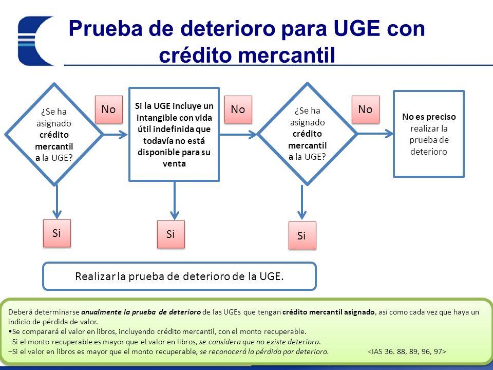 Prueba de deterioro para UGE con crédito mercantil ¿Se ha asignado crédito mercantil a la UGE.