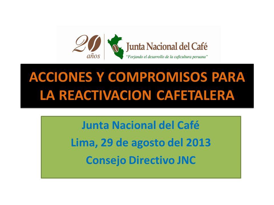 ACCIONES Y COMPROMISOS PARA LA REACTIVACION CAFETALERA Junta Nacional del Café Lima, 29 de agosto del 2013 Consejo Directivo JNC