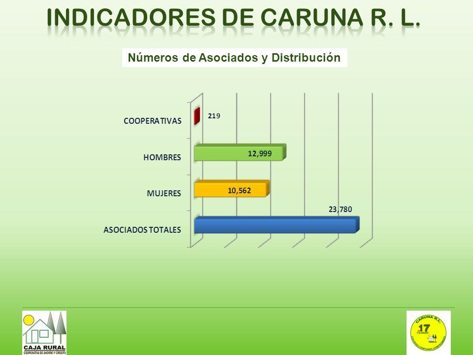 Números de Asociados y Distribución